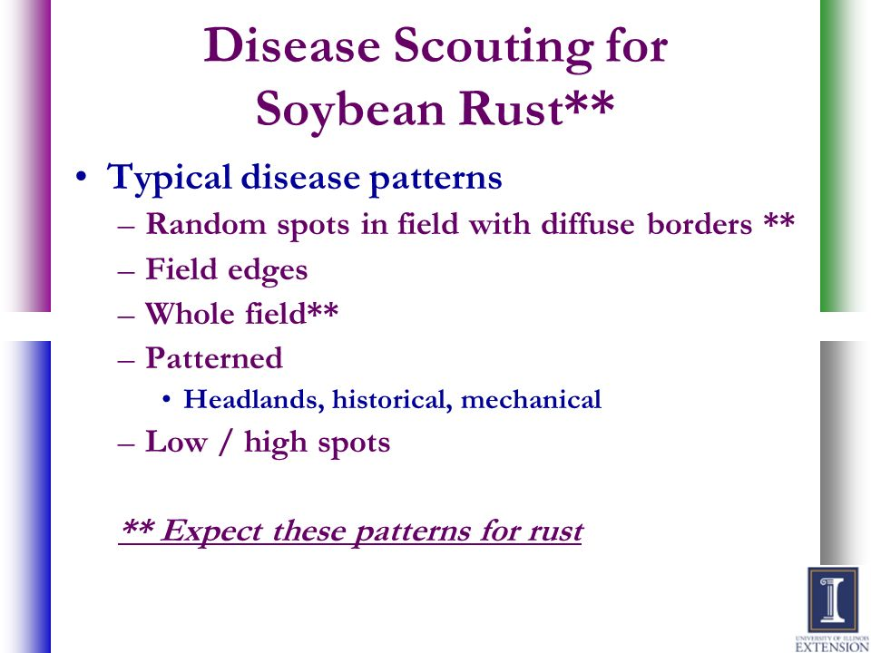 Disease Scouting for Soybean Rust**
