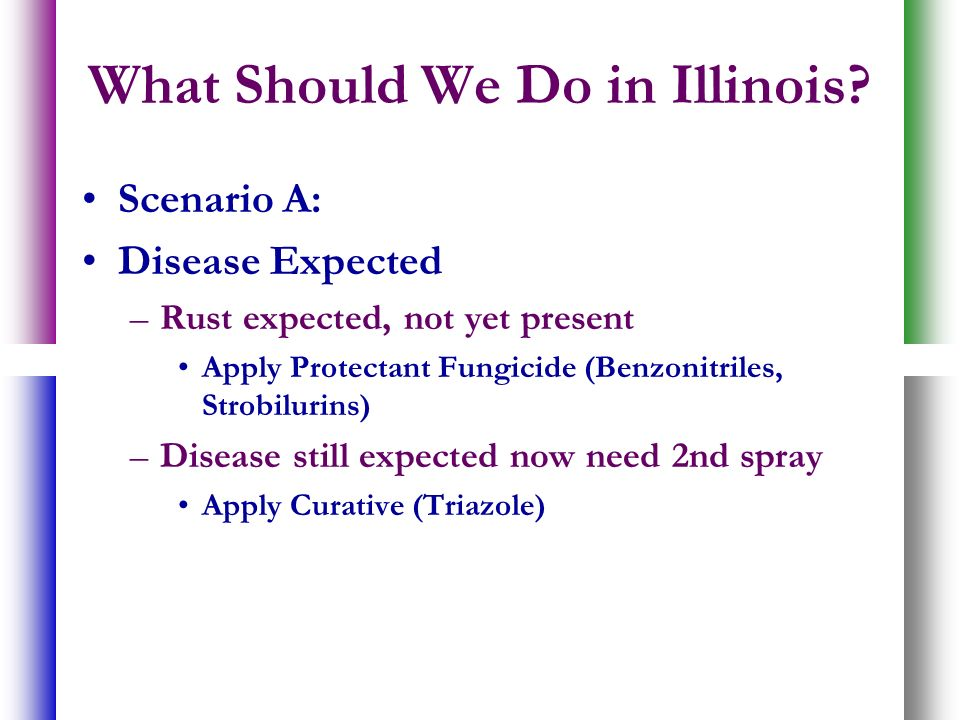 What Should We Do in Illinois