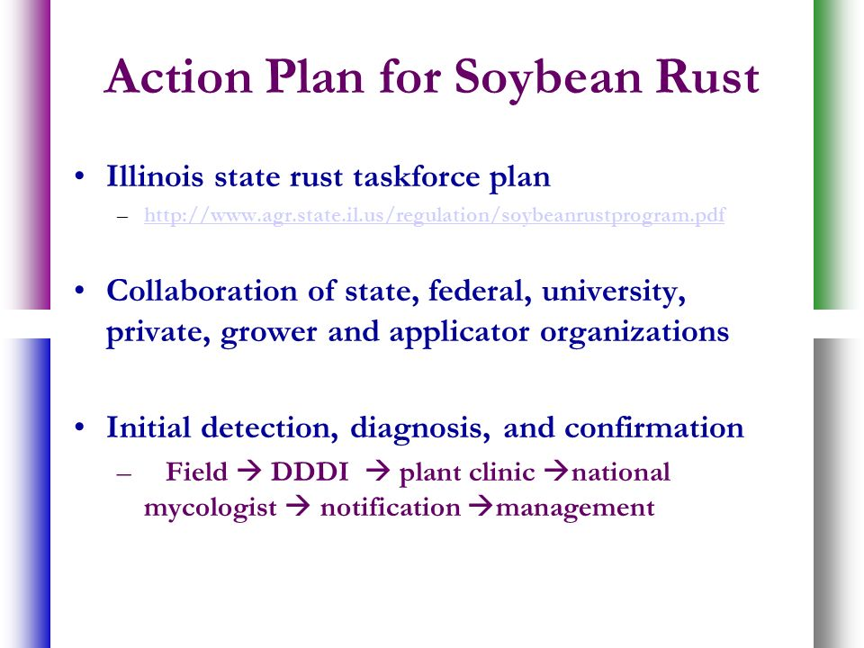 Action Plan for Soybean Rust