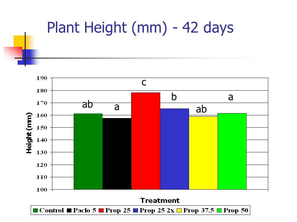 Plant Height (mm) - 42 days