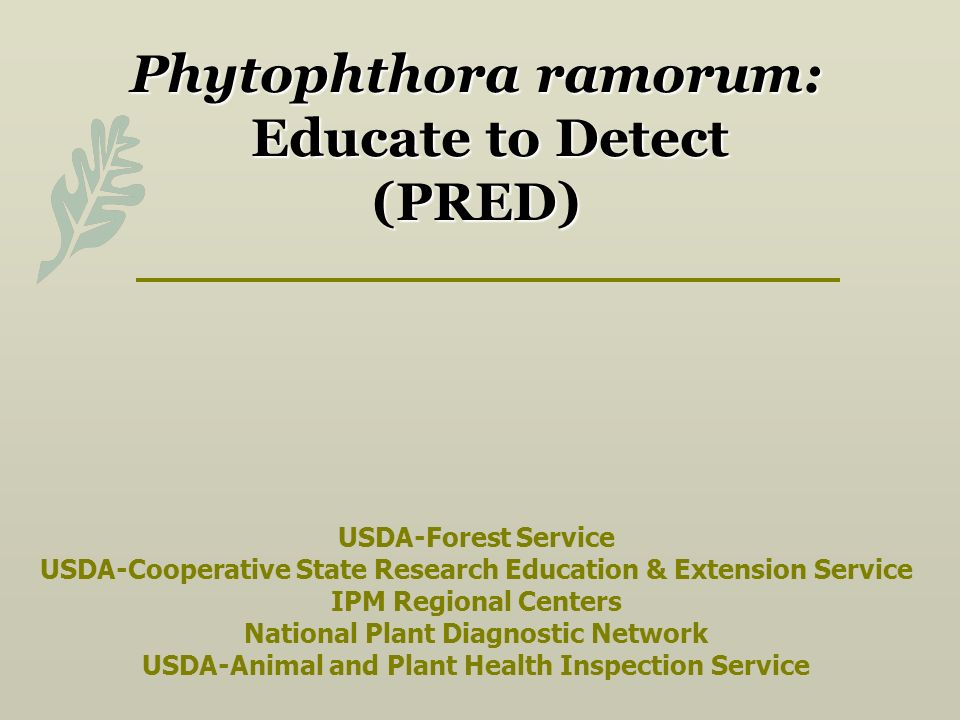 Phytophthora ramorum: Educate to Detect (PRED) USDA-Forest Service USDA-Cooperative State Research Education & Extension Service IPM Regional Centers National Plant Diagnostic Network USDA-Animal and Plant Health Inspection Service
