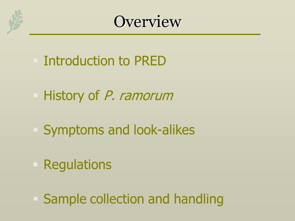 Overview Introduction to PRED History of P. ramorum