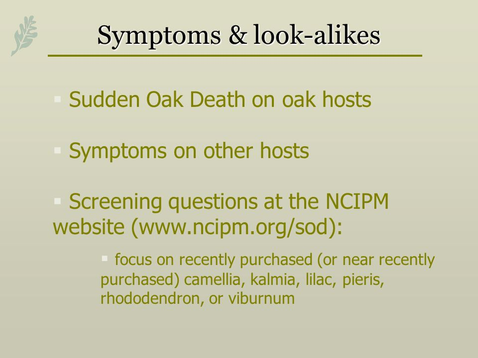 Symptoms & look-alikes