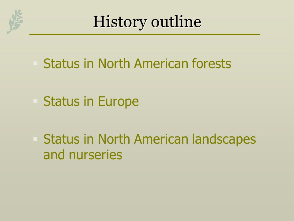 History outline Status in North American forests Status in Europe