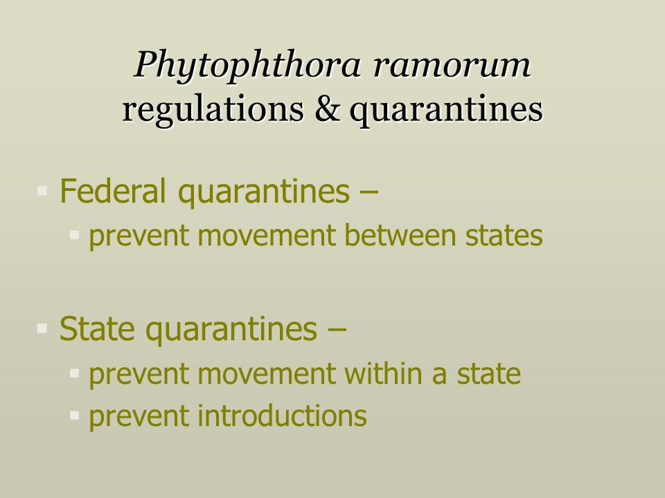 Phytophthora ramorum regulations & quarantines