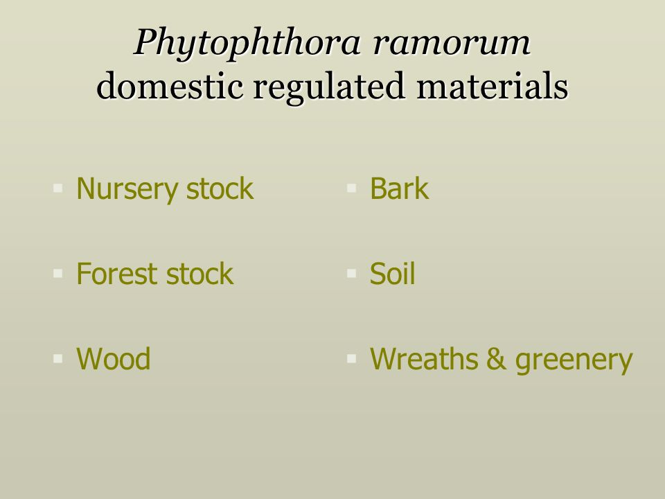 Phytophthora ramorum domestic regulated materials