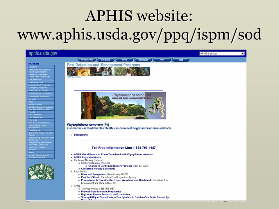 APHIS website: