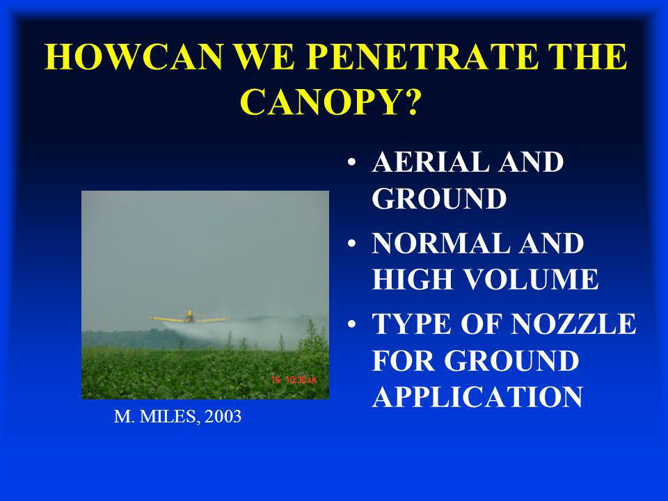 HOWCAN WE PENETRATE THE CANOPY