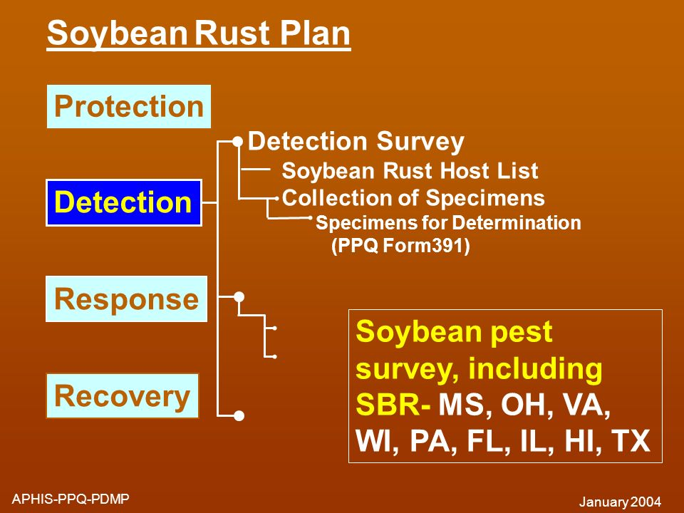 Soybean Rust Plan Protection Detection Response