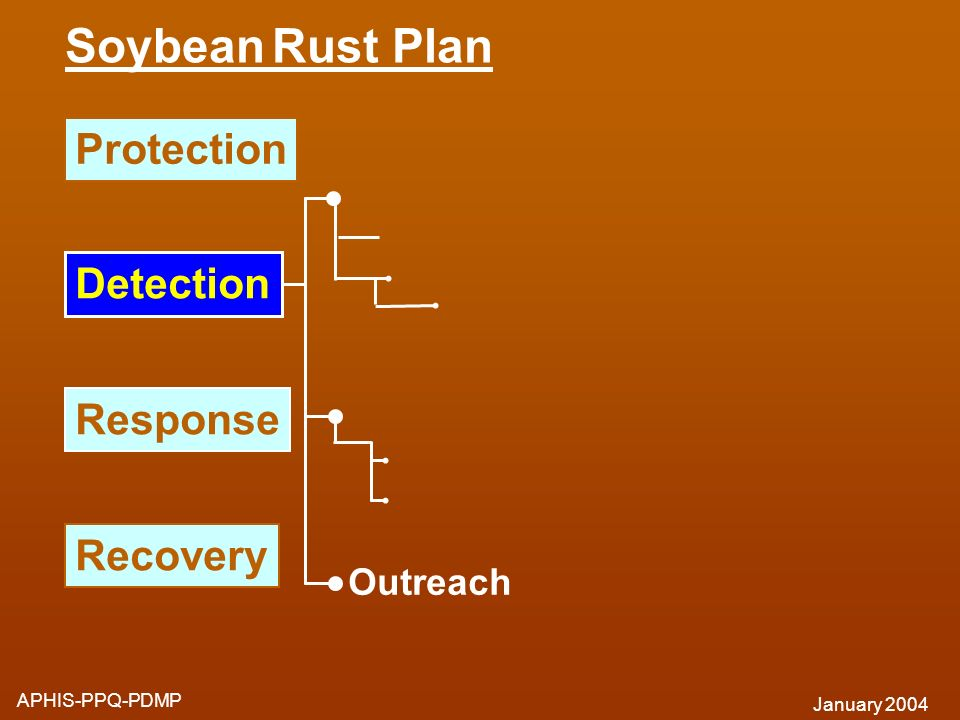 Soybean Rust Plan Protection Detection Response Recovery Outreach