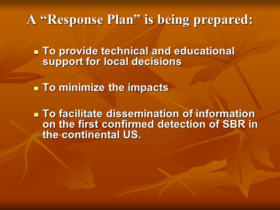 A Response Plan is being prepared: