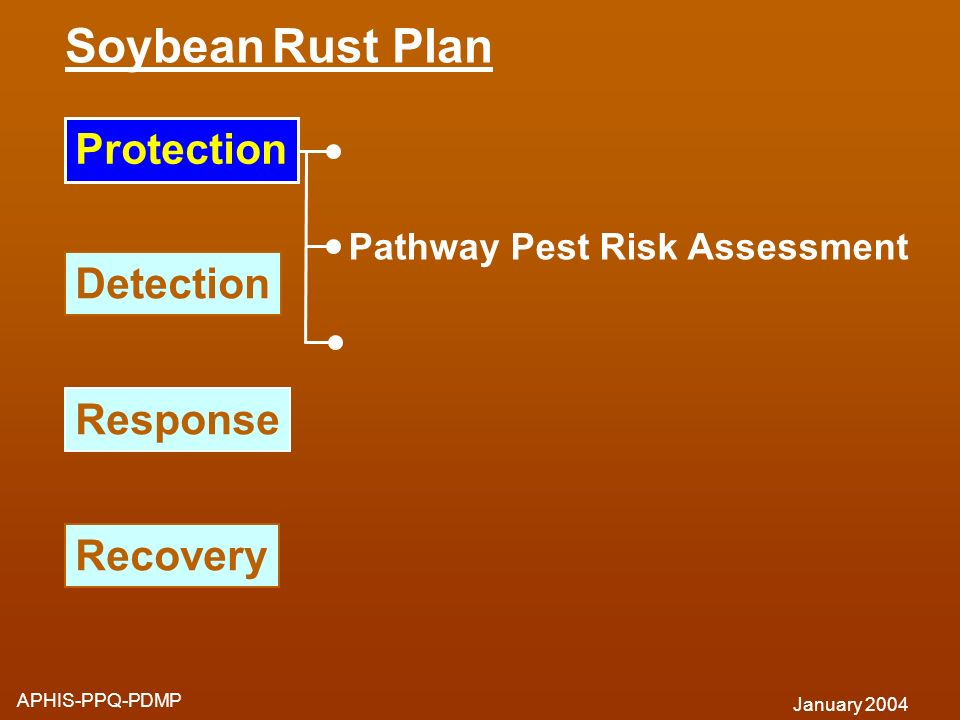 Soybean Rust Plan Protection Detection Response Recovery