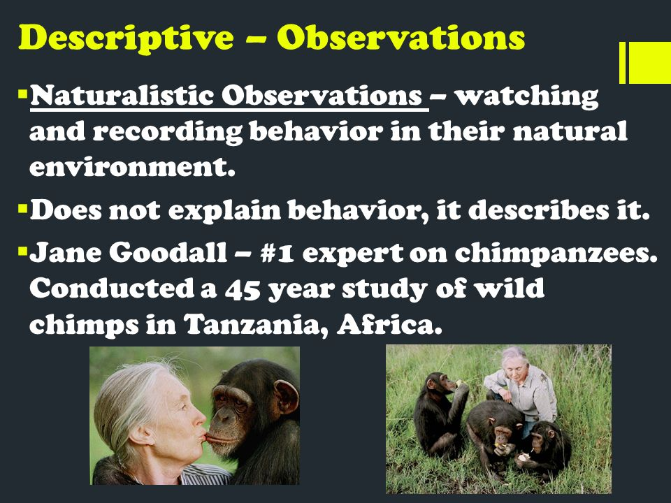 naturalistic observation research results There are two main categories of the observational method -- naturalistic the results found hale, j (2011) the 3 basic types of descriptive research.