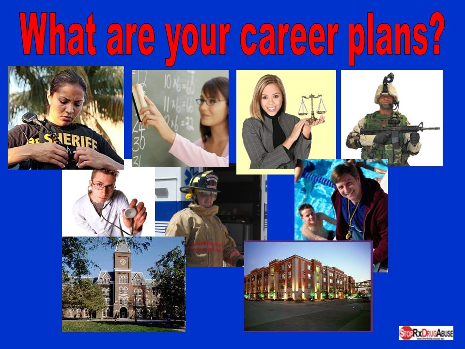 What are your career plans