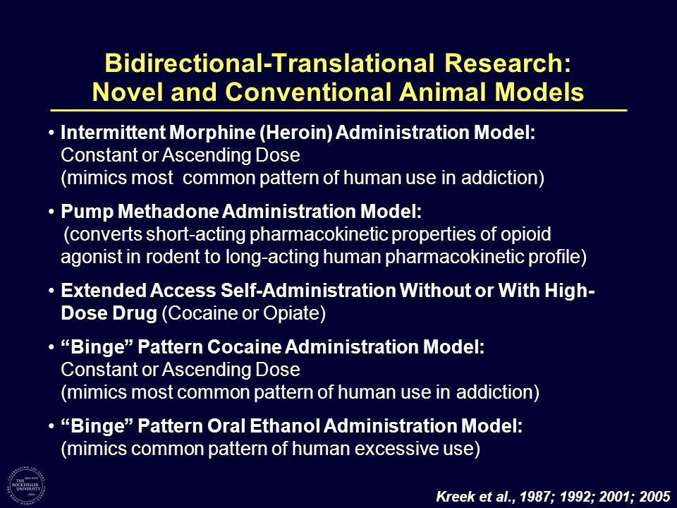 Bidirectional-Translational Research: Novel and Conventional Animal Models