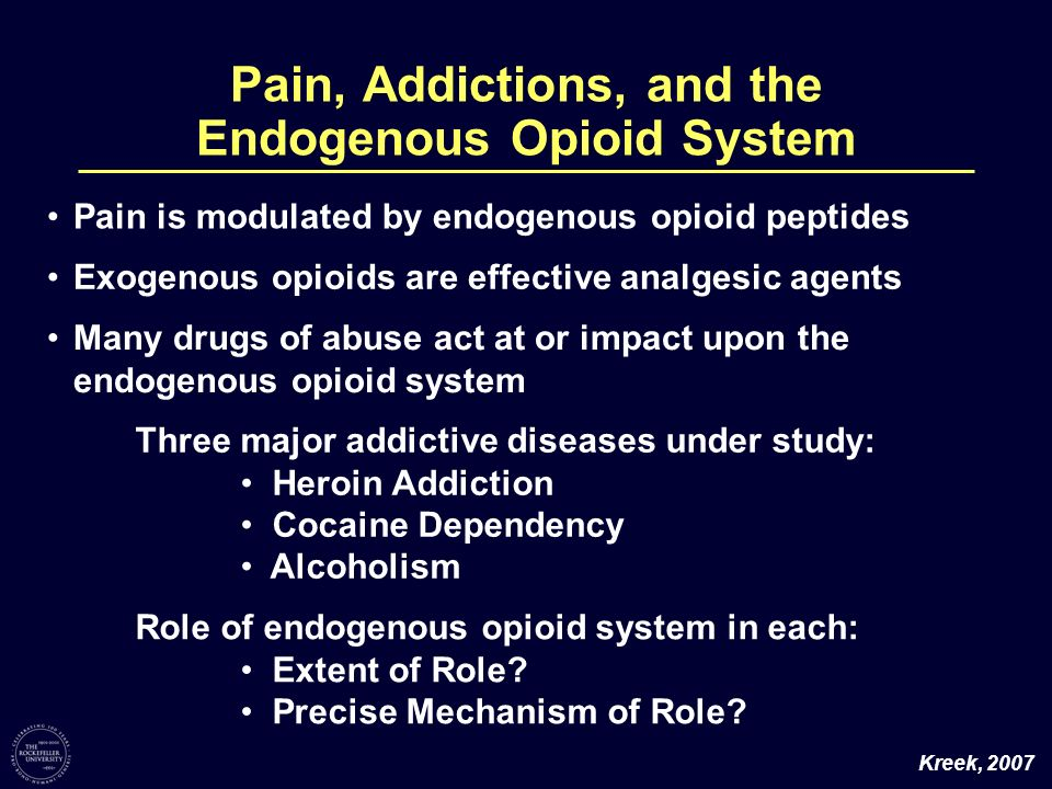 Pain, Addictions, and the Endogenous Opioid System