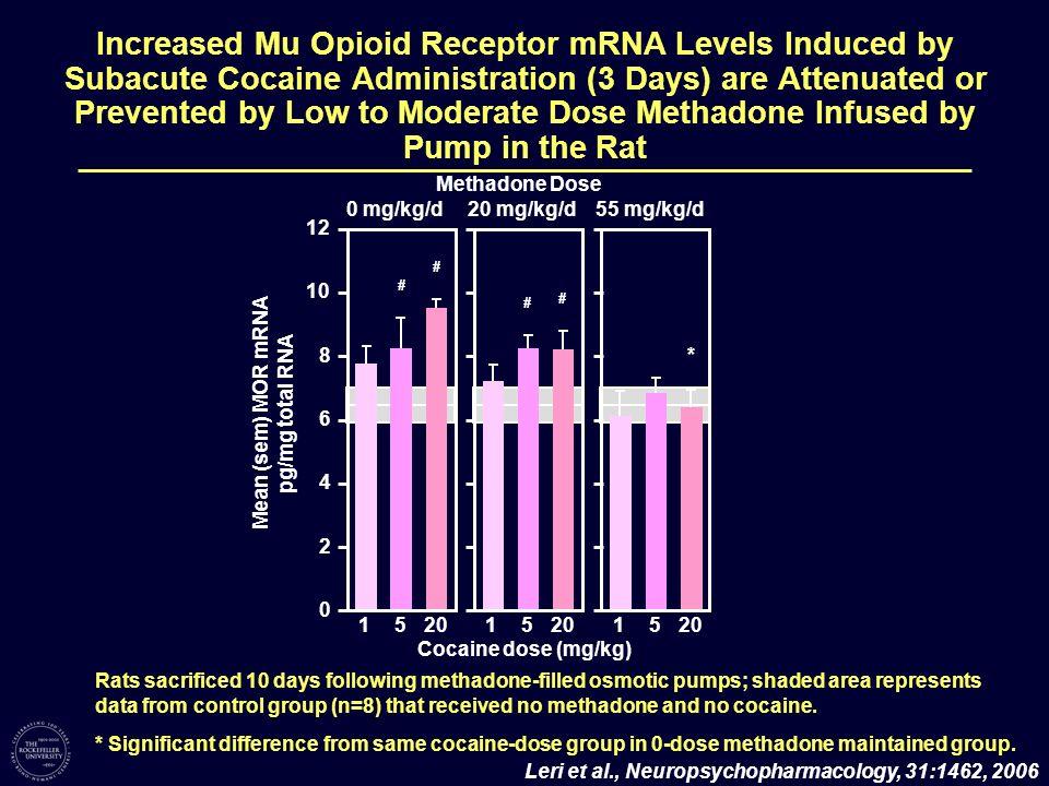 Mean (sem) MOR mRNA pg/mg total RNA