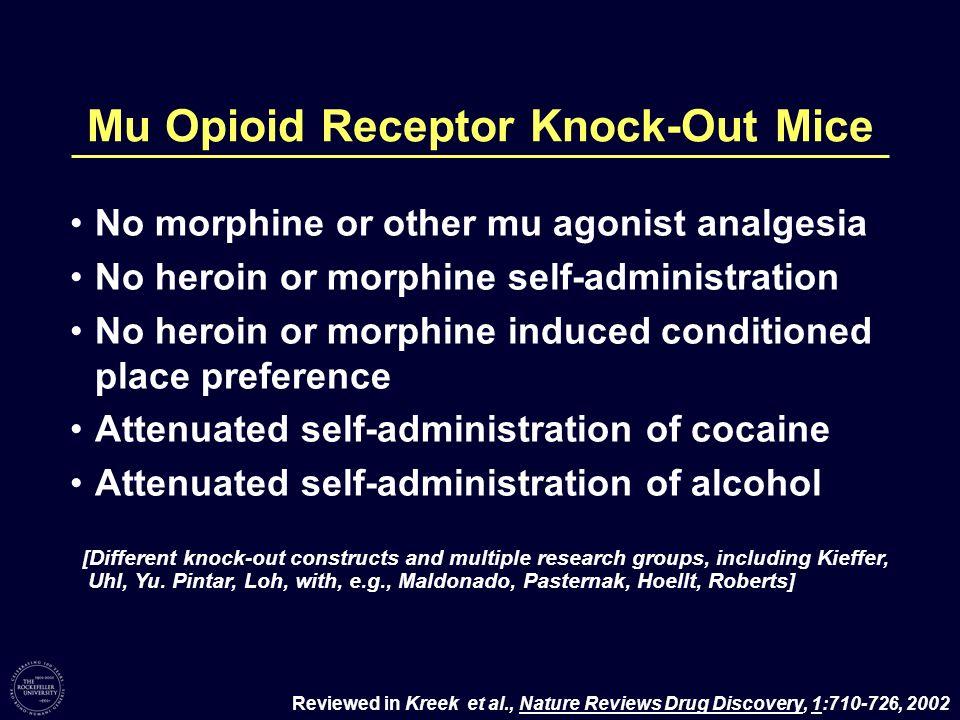 Mu Opioid Receptor Knock-Out Mice