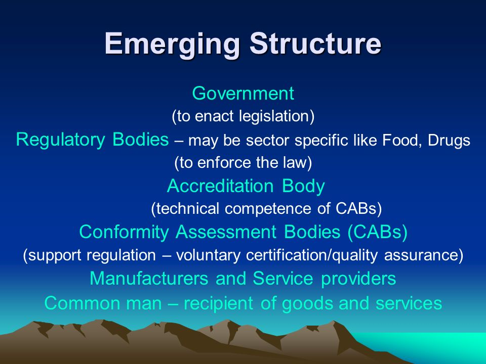 Emerging Structure Government