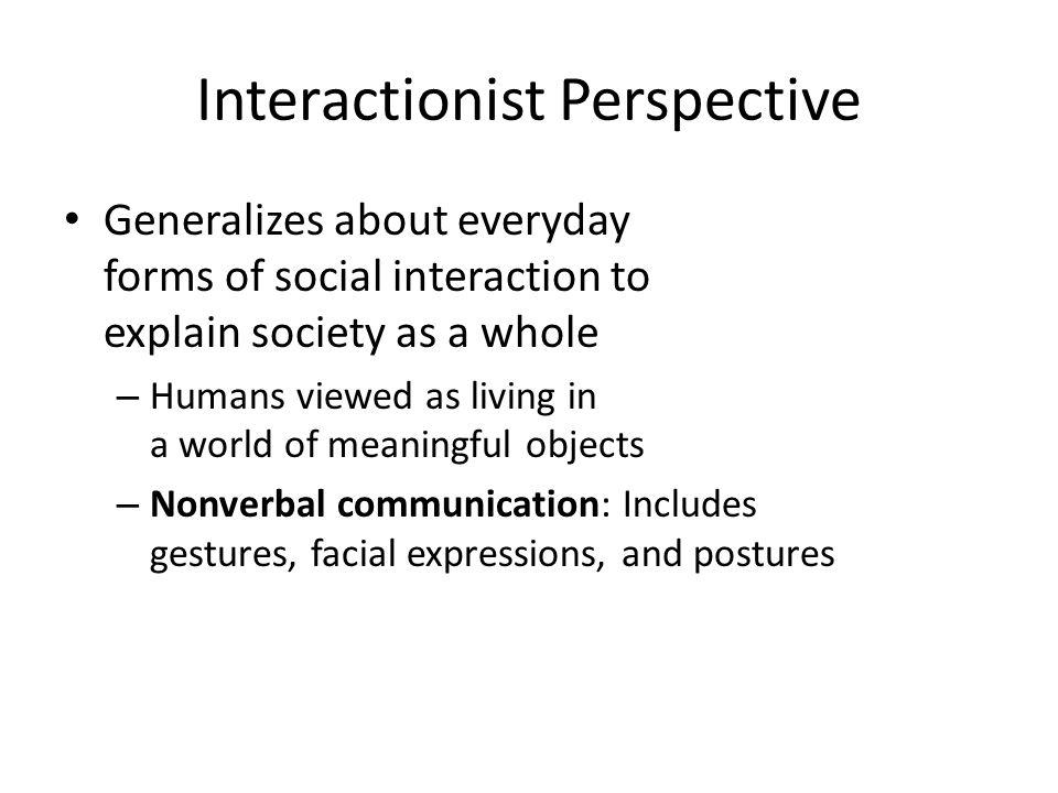 interactionist perspective