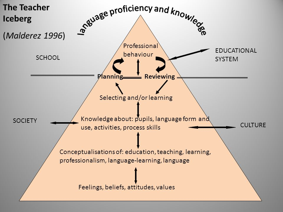 language proficiency and knowledge