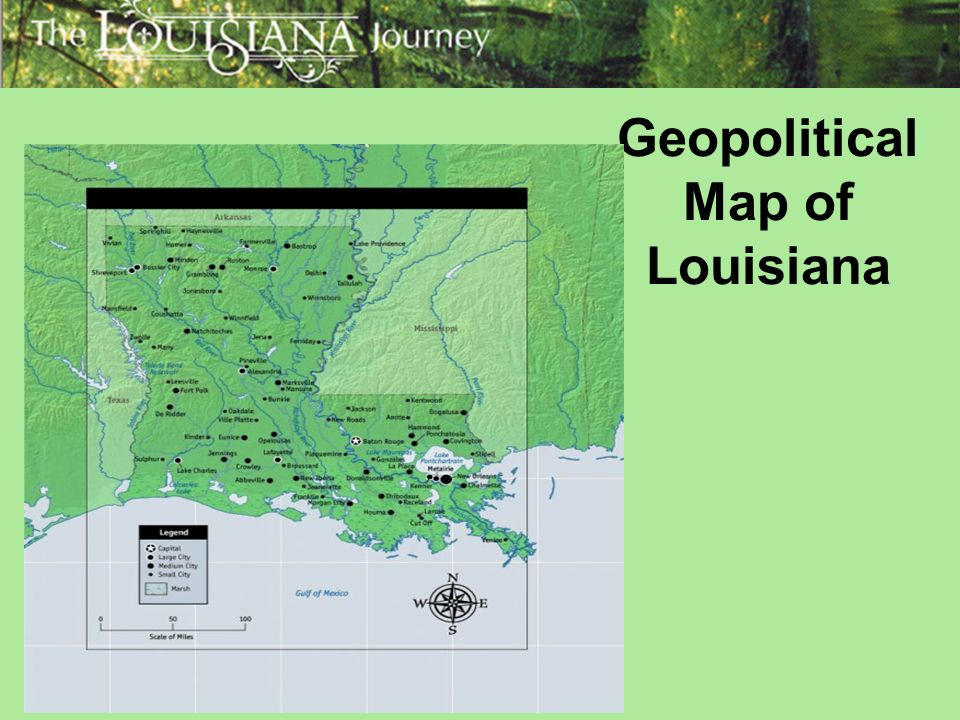 the economic impact of the louisiana purchase in 1904 2018-7-12  1904, the americans' first  the panama canal opened  tr pursued his interest in nature relentlessly — it was a pursuit that would impact.
