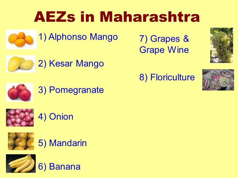 AEZs in Maharashtra 1) Alphonso Mango 7) Grapes & Grape Wine