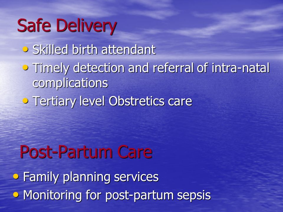 Safe Delivery Post-Partum Care Skilled birth attendant