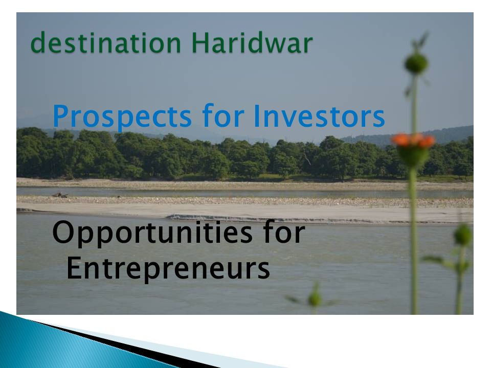 Prospects for Investors