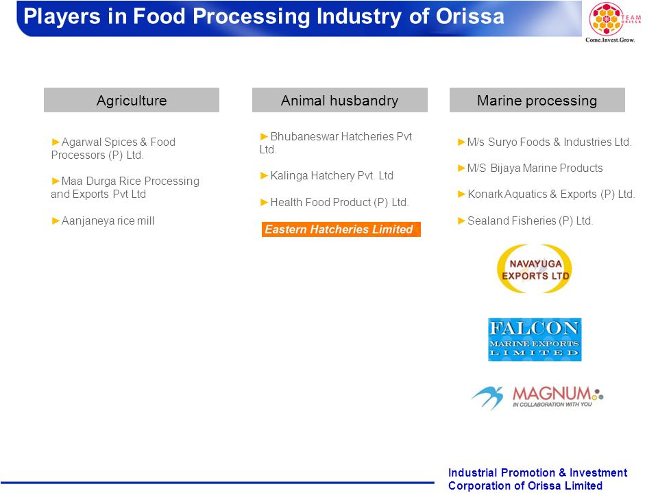 Players in Food Processing Industry of Orissa