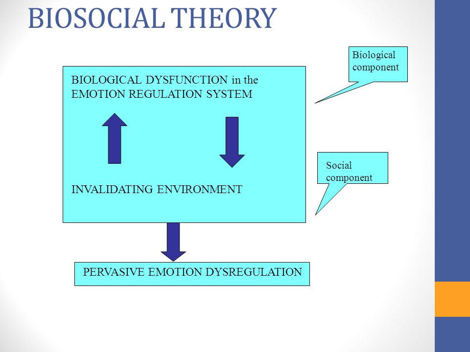 Dialectical Behaviour Therapy Dbt Ppt Video Online