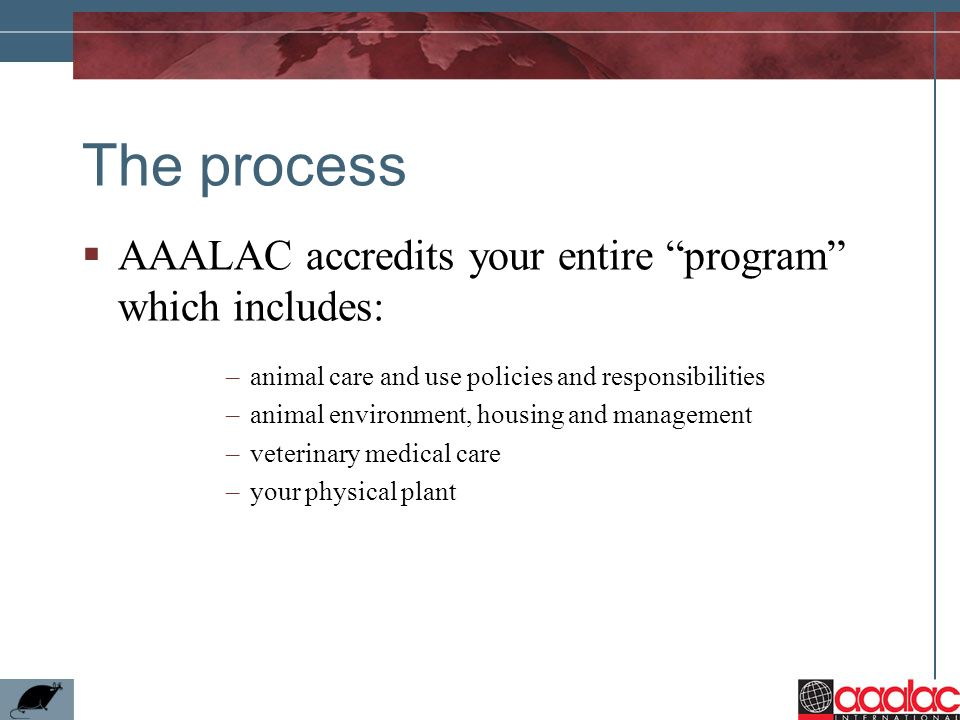 The process AAALAC accredits your entire program which includes: