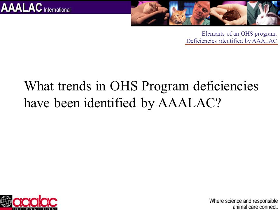 What trends in OHS Program deficiencies