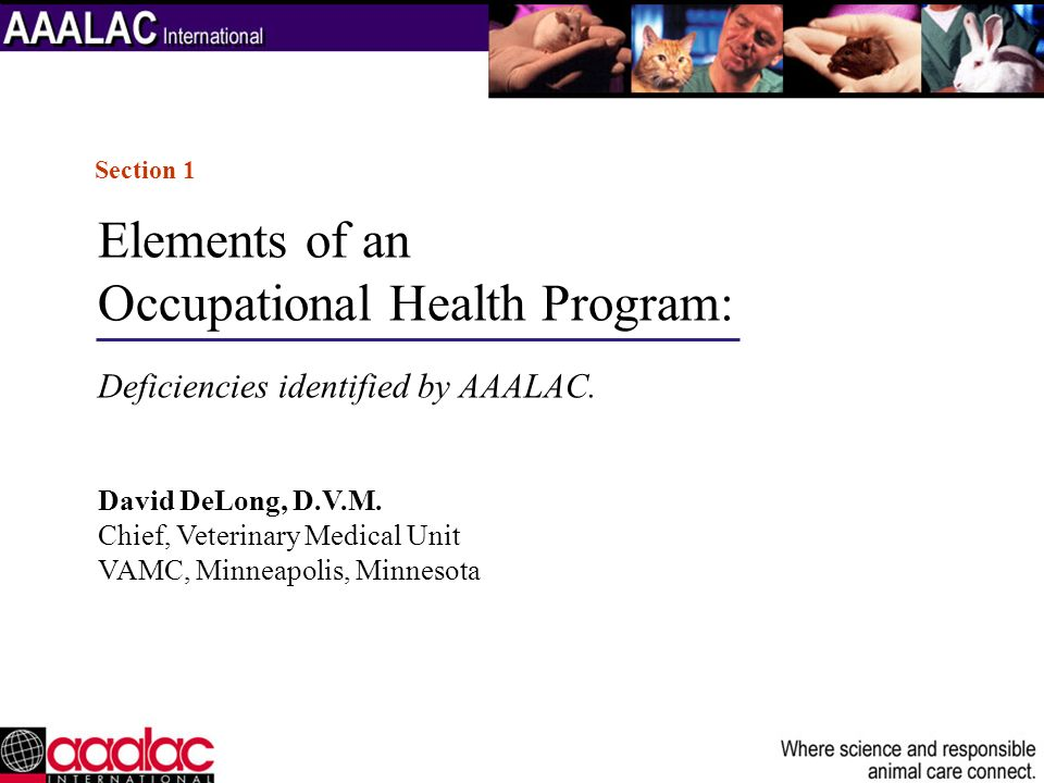 Occupational Health Program: