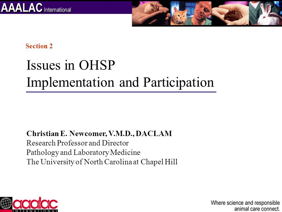 Implementation and Participation