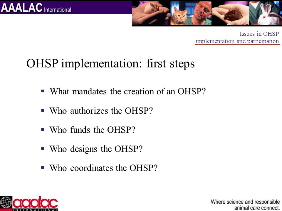 OHSP implementation: first steps