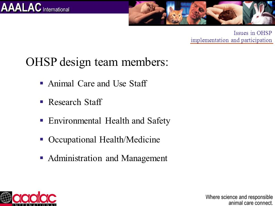 OHSP design team members: