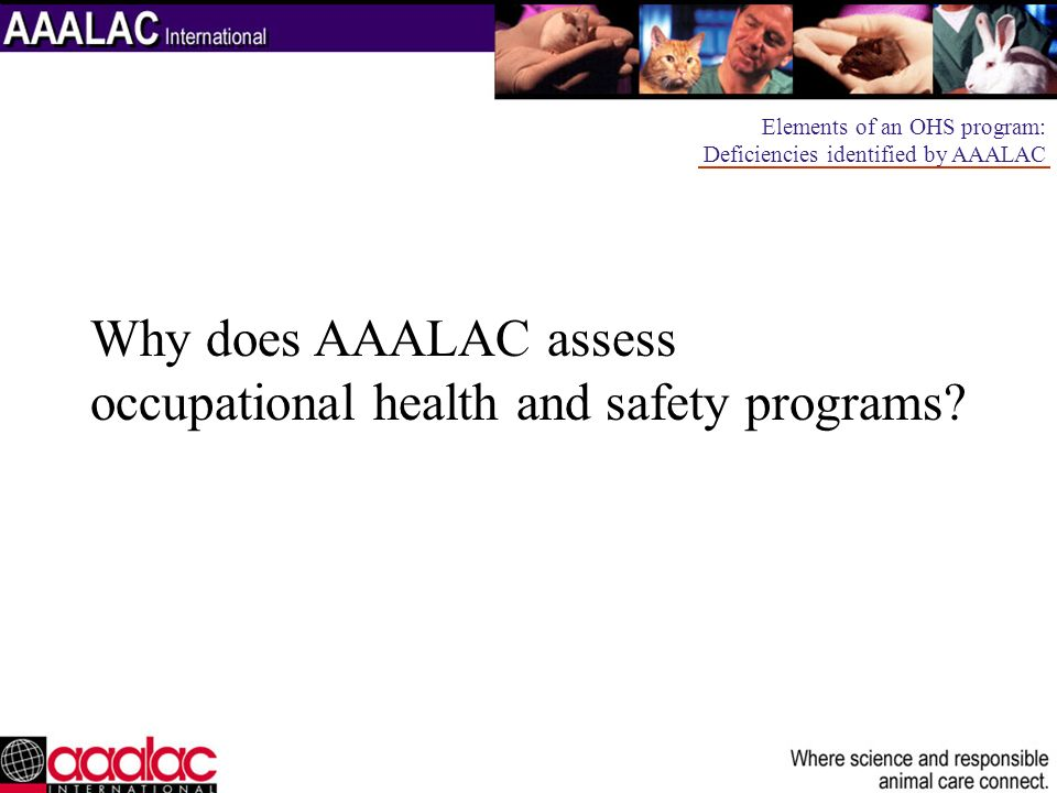 occupational health and safety programs