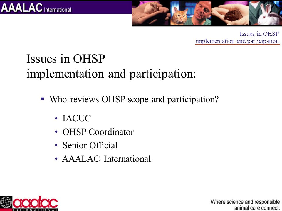 Issues in OHSP implementation and participation: