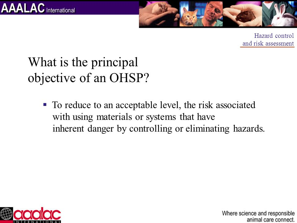 What is the principal objective of an OHSP