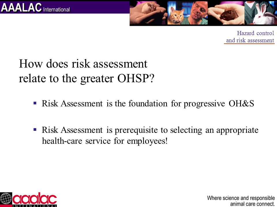 How does risk assessment relate to the greater OHSP