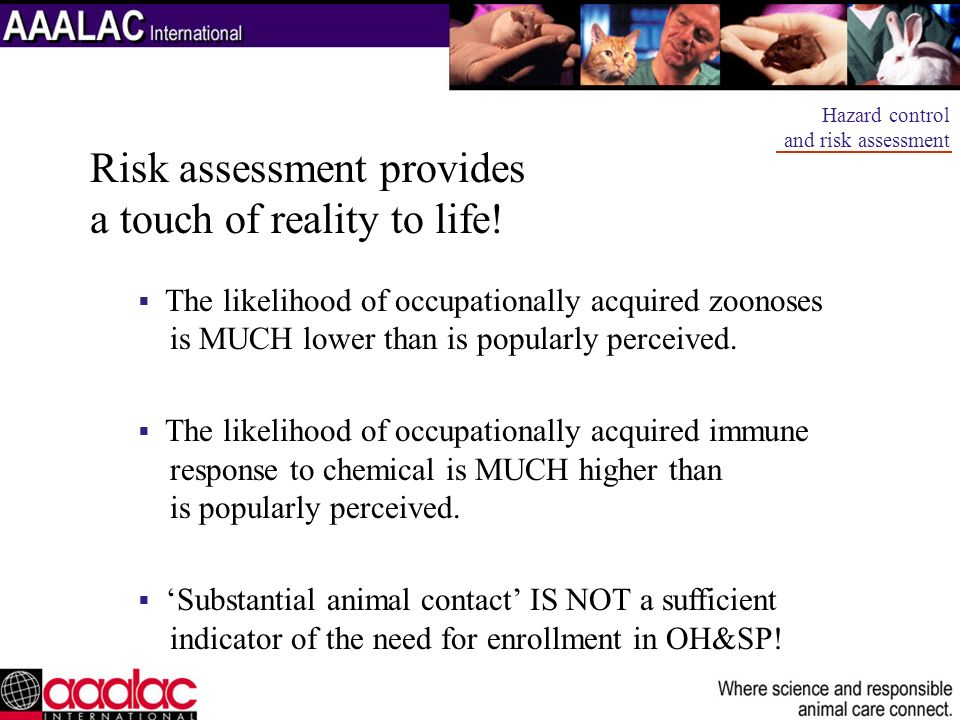 Risk assessment provides a touch of reality to life!