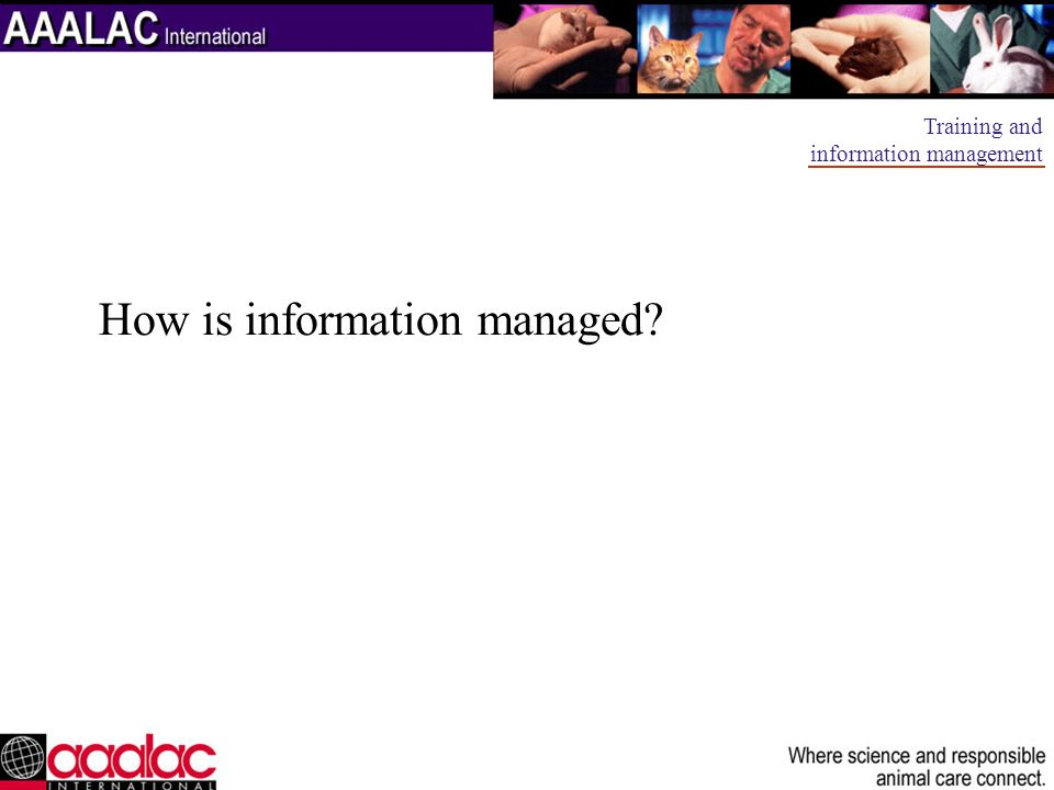 How is information managed