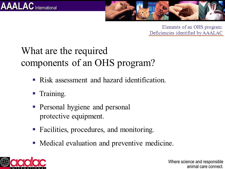 What are the required components of an OHS program