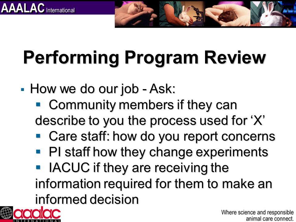 Performing Program Review