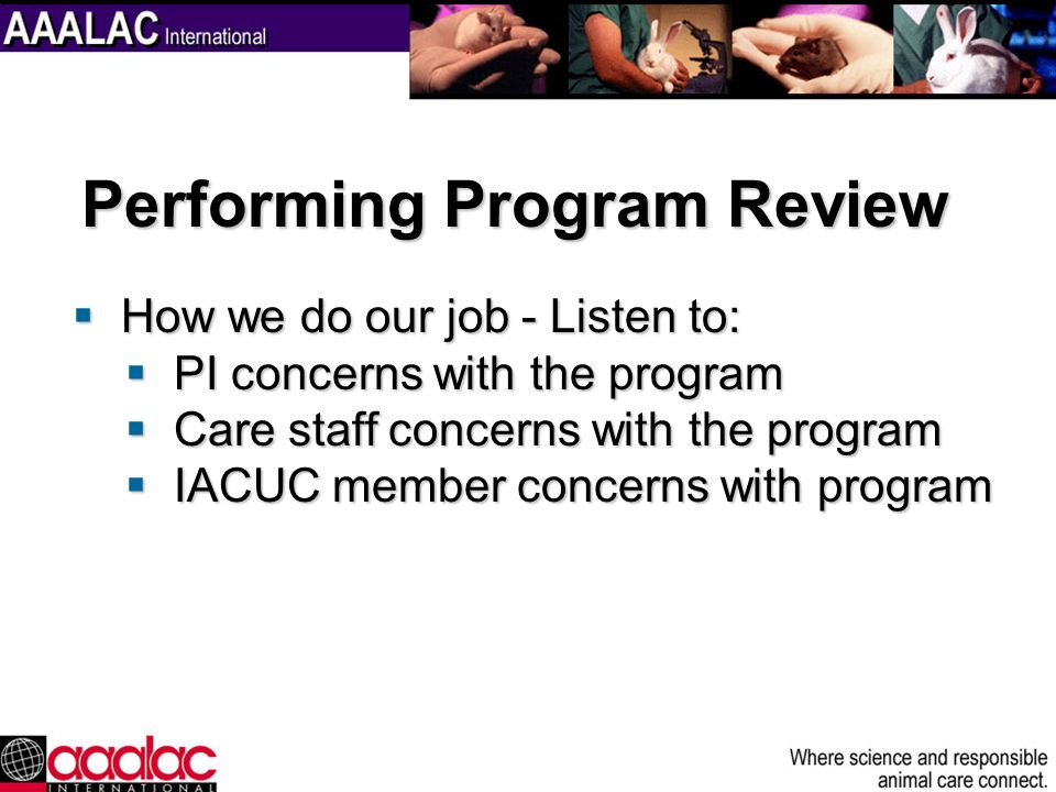 Performing Program Review