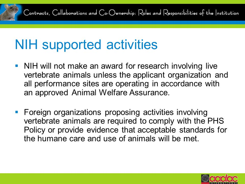 NIH supported activities