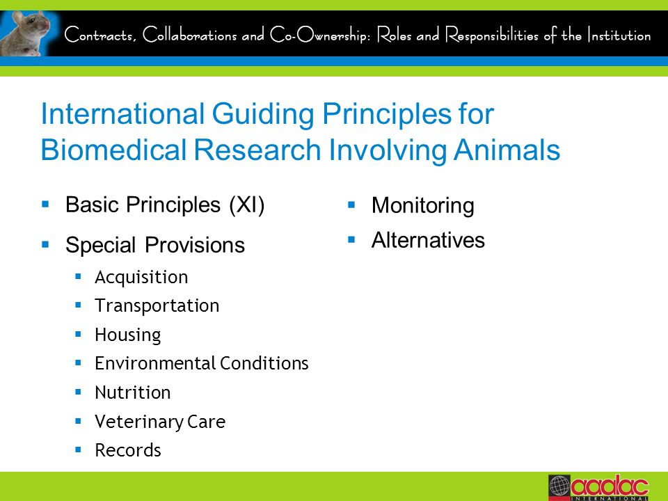 International Guiding Principles for Biomedical Research Involving Animals