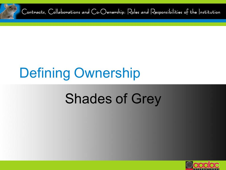 Defining Ownership Shades of Grey