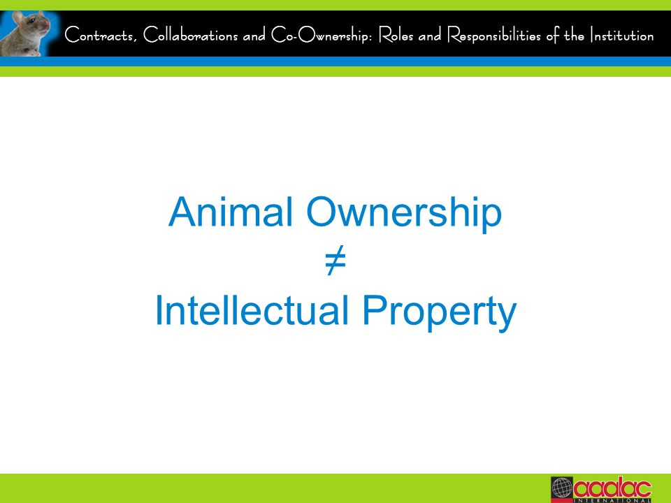 Animal Ownership ≠ Intellectual Property